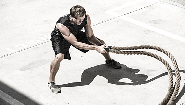 Battle-Ropes snake