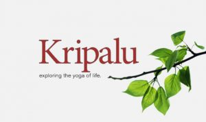 what is kripalu yoga
