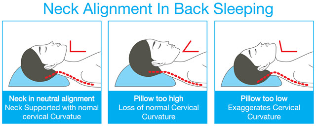Best Pillows For Neck Pain Of 2017 The Top Pillows Ranked