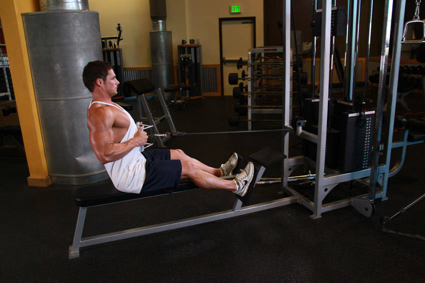 Scapular Retraction Seated Cable Rows