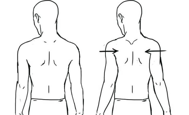 Scapular Retraction